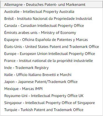 Enregistrer sa marque Amazon Brand Registry Propriété Intellectuelle Organismes